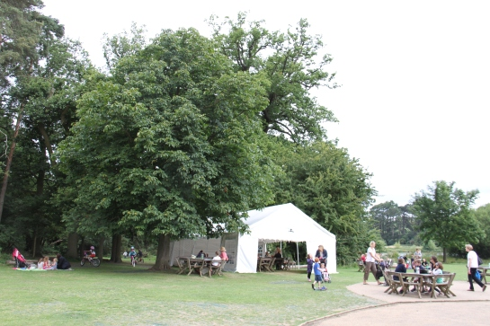 Hatfield forest picnics
