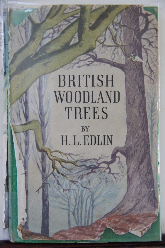 British Woodland Trees