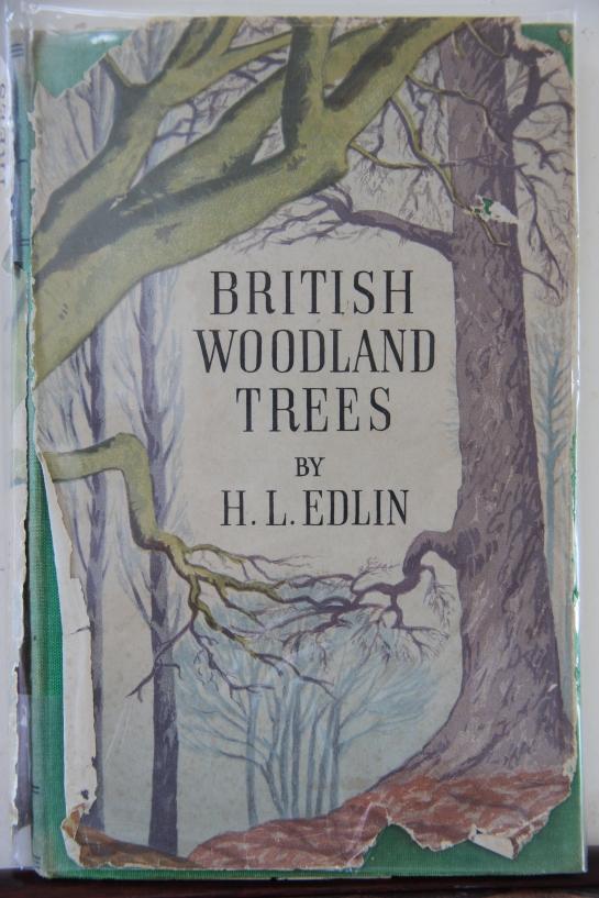 British Woodland Trees